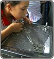Escolas públicas poderão ser beneficiadas - Eraldo Peres / Banco de Imagens ANA