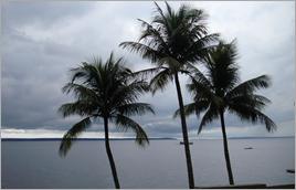 Rio Negro em Manaus (AM) - Raylton Alves / Banco de Imagens ANA